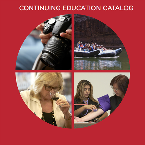 continuing education catakog cover